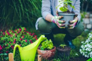 a-woman-gardening